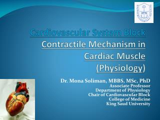 Cardiovascular System Block Contractile Mechanism in  Cardiac Muscle (Physiology )