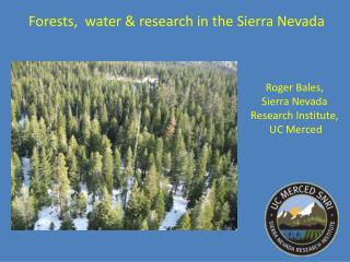 Forests,  water & research in the Sierra Nevada