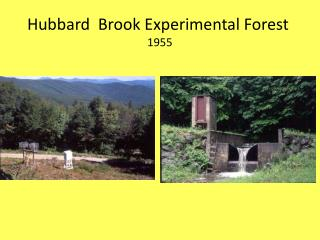 Hubbard  Brook Experimental Forest 1955
