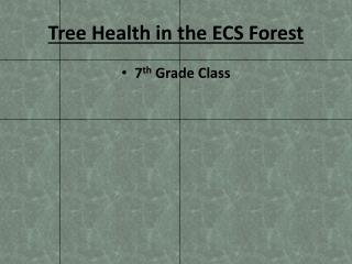 Tree Health in the ECS Forest