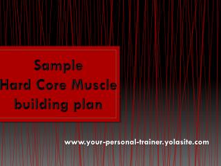 Sample  Hard  C ore  Muscle  building plan