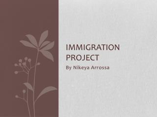 Immigration project