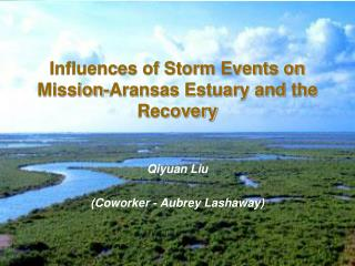 Influences of Storm Events on Mission-Aransas Estuary and the Recovery