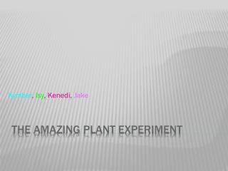 The Amazing Plant Experiment