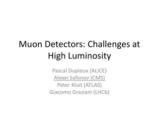 Muon  Detectors:  Challenges  at High Luminosity
