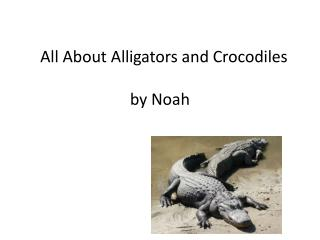 All About Alligators and Crocodiles by Noah