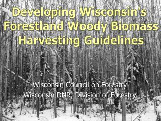 Wisconsin Council on Forestry  Wisconsin DNR, Division of Forestry