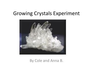 Growing Crystals Experiment