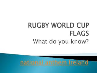 RUGBY WORLD CUP FLAGS