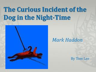 The C urious Incident of the Dog in the Night-Time