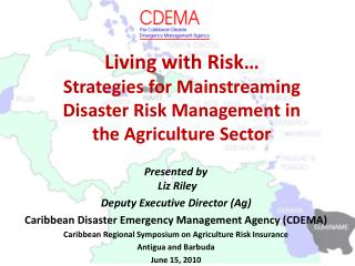 Living with Risk  Strategies for Mainstreaming Disaster Risk Management in  the Agriculture Sector