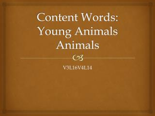 Content Words: Young Animals Animals