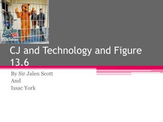 CJ and Technology and Figure 13.6