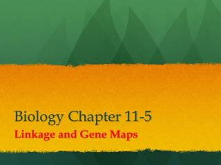Biology Chapter 11-5