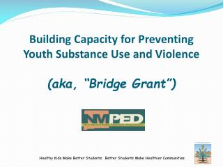 "Building Capacity for Preventing Youth Substance Use  and Violence (aka, ""Bridge  Grant"")"