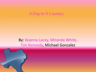 A Day In A Country