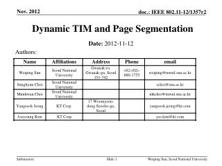 Dynamic TIM and Page Segmentation