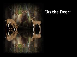 """""""As the Deer"""""""