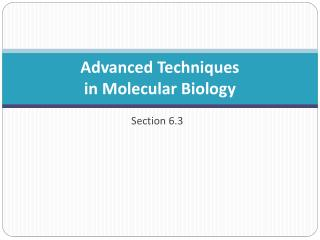 Advanced Techniques  in Molecular Biology