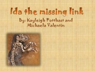 Ida the missing link