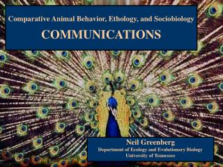 Comparative Animal Behavior, Ethology, and Sociobiology COMMUNICATIONS