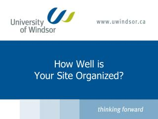 How Well is  Your Site Organized?