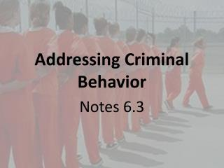 Addressing Criminal Behavior
