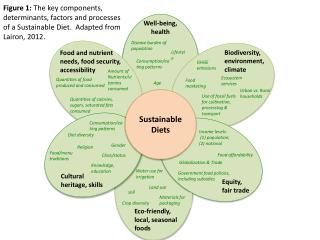 Sustainable Diets