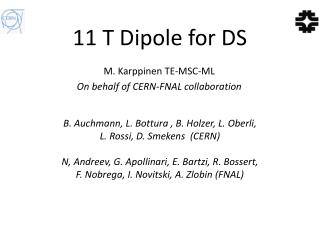 11 T Dipole for DS