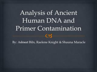 Analysis of Ancient Human DNA and Primer Contamination
