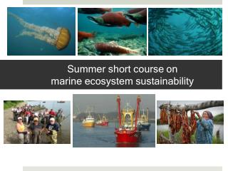 Summer short course  on  marine  ecosystem sustainability