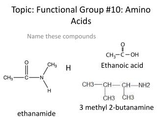Topic: Functional Group #10: Amino Acids
