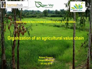 INVESTING IN SUSTAINABLE AGRICULTURE IN MYANMAR Organization  of an agricultural value  chain