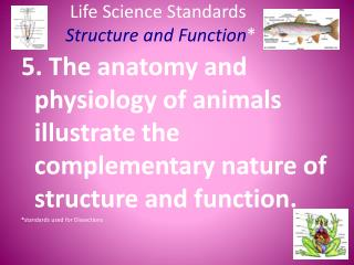 Life Science Standards Structure and Function *