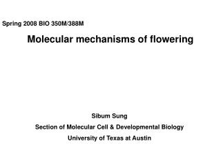 Spring 2008 BIO 350M/388M Molecular mechanisms of flowering