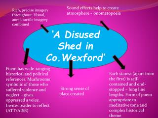 'A Disused Shed in  Co.Wexford '