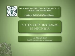 FAO FLAGSHIP PROGRAMME IN INDONESIA