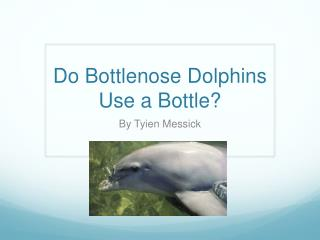 Do Bottlenose Dolphins  U se  a  Bottle ?