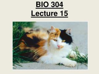 BIO 304 Lecture 15