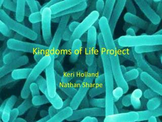 Kingdoms of Life Project