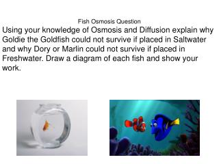Fish Osmosis Question
