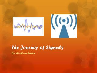The Journey of Signals