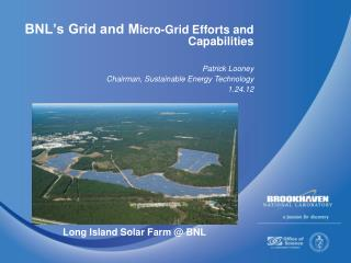 BNL's Grid  an d M icro-Grid  Efforts and Capabilities