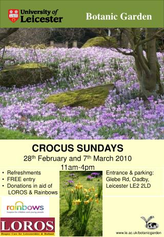 CROCUS SUNDAYS 28 th  February and  7 th March 2010 11am-4pm