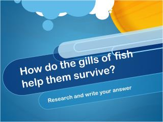How do the gills of fish help them survive?