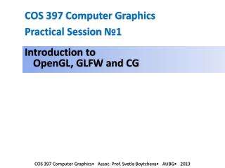 COS 397 Computer Graphics Practical Session  №1