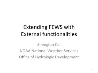 Extending FEWS with  External functionalities