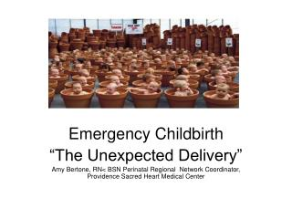 "Emergency Childbirth ""The Unexpected Delivery"""
