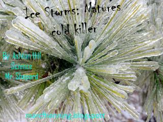Ice Storms: Natures   cold killer