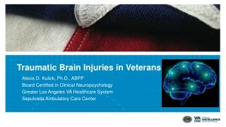 Traumatic Brain Injuries in Veterans